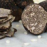 Изкупуване и продажба на трюфели | Еуро Конт ООД