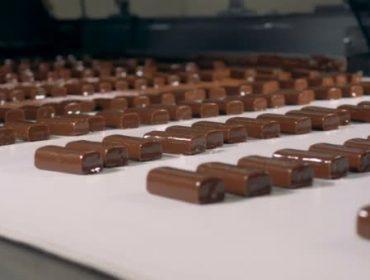 Търговия със захар, шоколадови изделия, зехтин и олио | Елевсинис Фууд Трейдинг