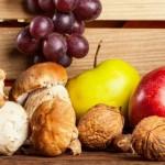 Изкупуване и преработка на гъби и плодове Банско (село Филипово) | ЮСИ ООД